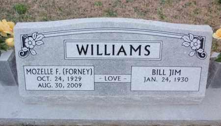 WILLIAMS, MOZELLE F. - Boone County, Arkansas | MOZELLE F. WILLIAMS - Arkansas Gravestone Photos