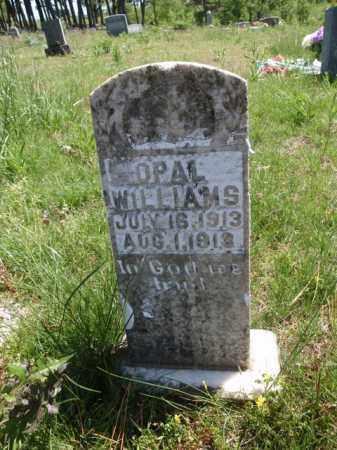 WILLIAMS, OPAL - Boone County, Arkansas | OPAL WILLIAMS - Arkansas Gravestone Photos
