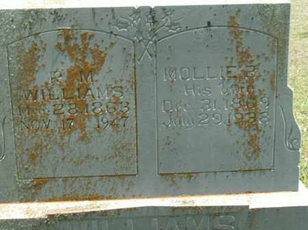 WILSON WILLIAMS, MOLLIE B. - Boone County, Arkansas | MOLLIE B. WILSON WILLIAMS - Arkansas Gravestone Photos