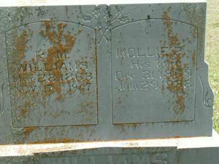 WILLIAMS, R.M. - Boone County, Arkansas | R.M. WILLIAMS - Arkansas Gravestone Photos