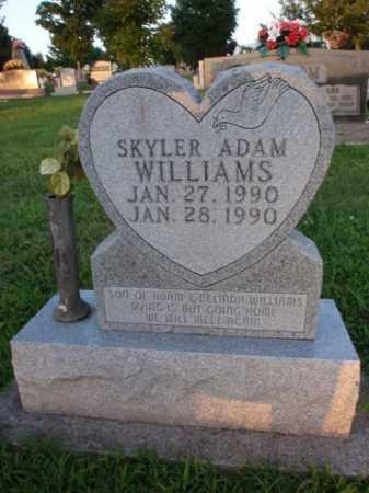 WILLIAMS, SKYLER ADAM - Boone County, Arkansas | SKYLER ADAM WILLIAMS - Arkansas Gravestone Photos