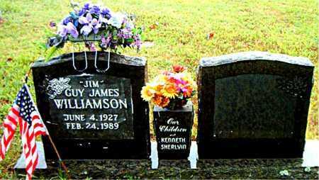 WILLIAMSON, GUY JAMES - Boone County, Arkansas | GUY JAMES WILLIAMSON - Arkansas Gravestone Photos