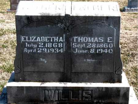 WILLIS, ELIZABETH A. - Boone County, Arkansas | ELIZABETH A. WILLIS - Arkansas Gravestone Photos