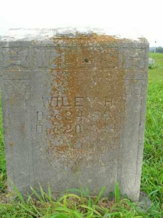 WILLIS, WILEY HOLLOWAY - Boone County, Arkansas | WILEY HOLLOWAY WILLIS - Arkansas Gravestone Photos
