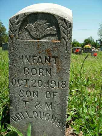 WILLOUGHBY, INFANT SON - Boone County, Arkansas | INFANT SON WILLOUGHBY - Arkansas Gravestone Photos