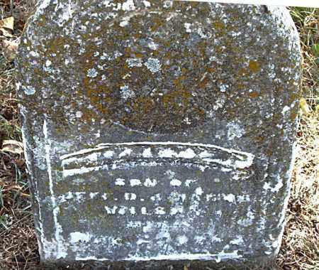 WILSON, EVERETTE  L. - Boone County, Arkansas | EVERETTE  L. WILSON - Arkansas Gravestone Photos