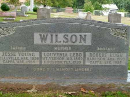 WILSON, JESSE YOUNG - Boone County, Arkansas | JESSE YOUNG WILSON - Arkansas Gravestone Photos