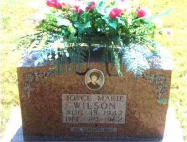 TAYLOR WILSON, JOYCE MARIE - Boone County, Arkansas | JOYCE MARIE TAYLOR WILSON - Arkansas Gravestone Photos
