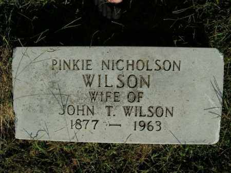 WILSON, PINKIE ALMEDA - Boone County, Arkansas | PINKIE ALMEDA WILSON - Arkansas Gravestone Photos