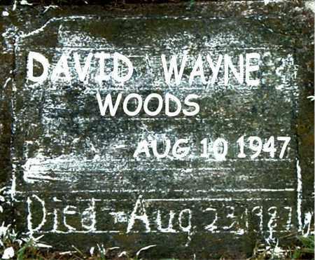 WOODS, DAVID WAYNE - Boone County, Arkansas | DAVID WAYNE WOODS - Arkansas Gravestone Photos