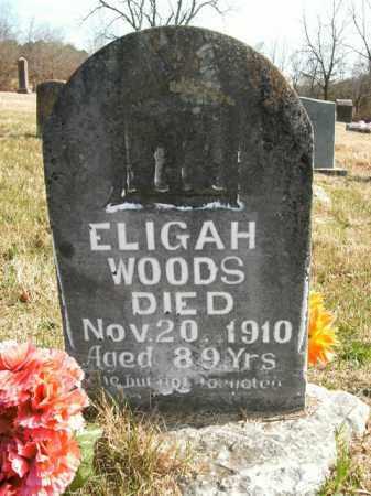 WOODS, ELIGAH - Boone County, Arkansas | ELIGAH WOODS - Arkansas Gravestone Photos