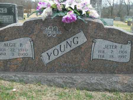 YOUNG, ALGIE P. - Boone County, Arkansas | ALGIE P. YOUNG - Arkansas Gravestone Photos