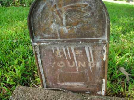 YOUNG, E. F. - Boone County, Arkansas | E. F. YOUNG - Arkansas Gravestone Photos