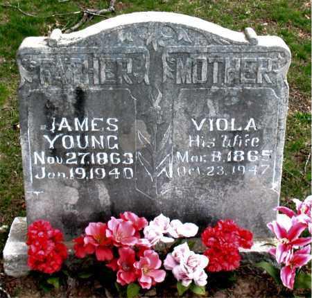 YOUNG, VIOLA - Boone County, Arkansas   VIOLA YOUNG - Arkansas Gravestone Photos
