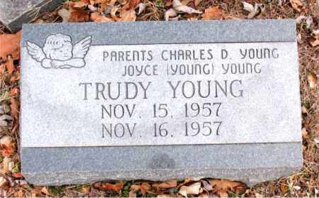 YOUNG, TRUDY - Boone County, Arkansas | TRUDY YOUNG - Arkansas Gravestone Photos