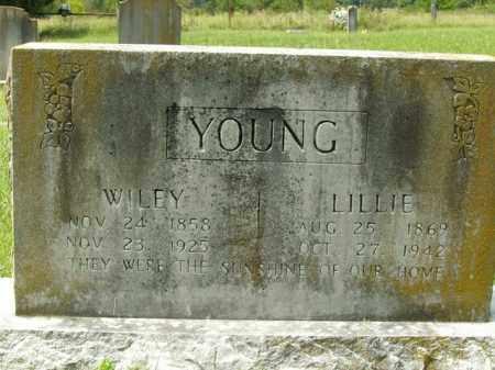 YOUNG, WILEY - Boone County, Arkansas | WILEY YOUNG - Arkansas Gravestone Photos