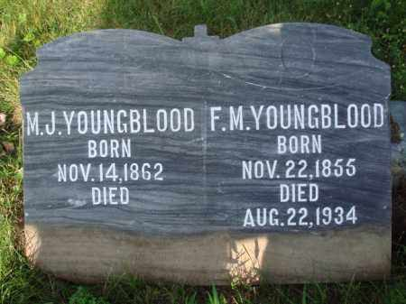 YOUNGBLOOD, M. J. - Boone County, Arkansas | M. J. YOUNGBLOOD - Arkansas Gravestone Photos