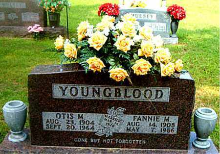 YOUNGBLOOD, FANNIE  M. - Boone County, Arkansas | FANNIE  M. YOUNGBLOOD - Arkansas Gravestone Photos