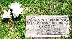 COXSEY, ALVIN EDWARD - Boone County, Arkansas | ALVIN EDWARD COXSEY - Arkansas Gravestone Photos