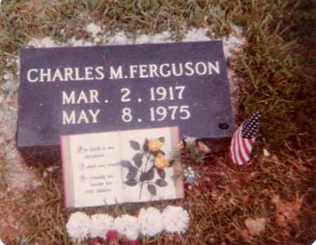 FERGUSON, CHARLES MARTEL - Bradley County, Arkansas | CHARLES MARTEL FERGUSON - Arkansas Gravestone Photos