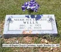 WELLS, NELKIE SUE - Bradley County, Arkansas | NELKIE SUE WELLS - Arkansas Gravestone Photos