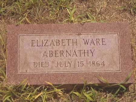 ABERNATHY, ELIZABETH CAROLINE - Calhoun County, Arkansas   ELIZABETH CAROLINE ABERNATHY - Arkansas Gravestone Photos