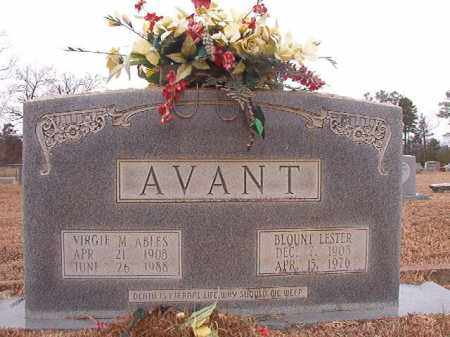 AVANT, BLOUNT LESTER - Calhoun County, Arkansas | BLOUNT LESTER AVANT - Arkansas Gravestone Photos