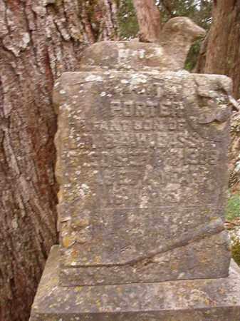 BASS, MARTIN PORTER - Calhoun County, Arkansas | MARTIN PORTER BASS - Arkansas Gravestone Photos