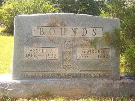 BOUNDS, HESTER A - Calhoun County, Arkansas   HESTER A BOUNDS - Arkansas Gravestone Photos