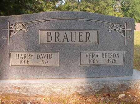 BRAUER, HARRY DAVID - Calhoun County, Arkansas | HARRY DAVID BRAUER - Arkansas Gravestone Photos