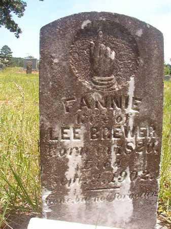 BREWER, FANNIE - Calhoun County, Arkansas   FANNIE BREWER - Arkansas Gravestone Photos