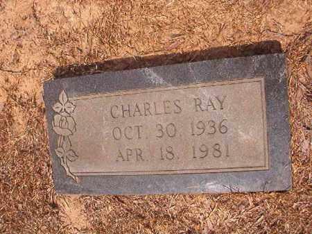 BRIDWELL, CHARLES RAY - Calhoun County, Arkansas | CHARLES RAY BRIDWELL - Arkansas Gravestone Photos