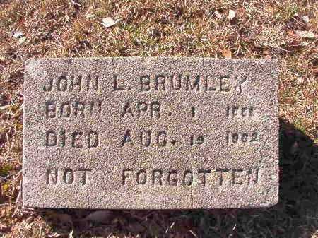 BRUMLEY, JOHN L - Calhoun County, Arkansas | JOHN L BRUMLEY - Arkansas Gravestone Photos