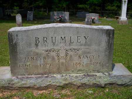 BRUMLEY, NANCY E - Calhoun County, Arkansas | NANCY E BRUMLEY - Arkansas Gravestone Photos