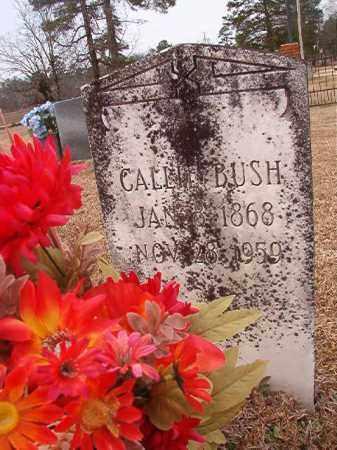 BUSH, CALLIE - Calhoun County, Arkansas   CALLIE BUSH - Arkansas Gravestone Photos