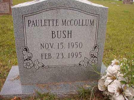 BUSH, PAULETTE - Calhoun County, Arkansas | PAULETTE BUSH - Arkansas Gravestone Photos
