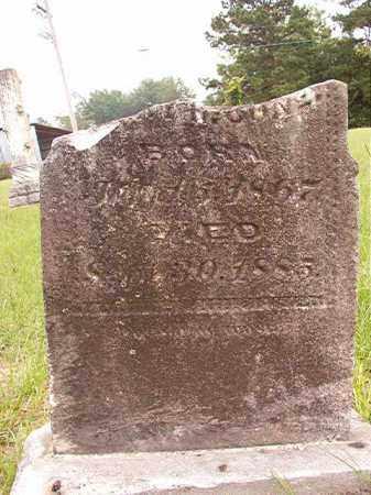 CONE, WILLIAM B - Calhoun County, Arkansas   WILLIAM B CONE - Arkansas Gravestone Photos