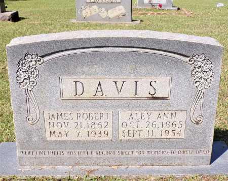DAVIS, JAMES ROBERT - Calhoun County, Arkansas | JAMES ROBERT DAVIS - Arkansas Gravestone Photos