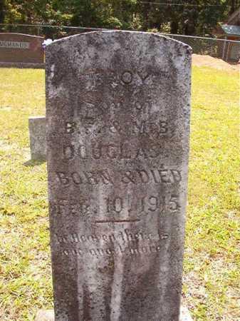 DOUGLAS, TROY - Calhoun County, Arkansas   TROY DOUGLAS - Arkansas Gravestone Photos