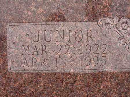 DUNN, JUNIOR - Calhoun County, Arkansas | JUNIOR DUNN - Arkansas Gravestone Photos