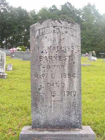 EARNEST, ANDREW J - Calhoun County, Arkansas | ANDREW J EARNEST - Arkansas Gravestone Photos