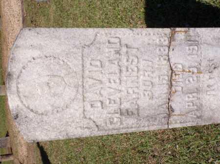 EARNEST, DAVID CLEVELAND - Calhoun County, Arkansas | DAVID CLEVELAND EARNEST - Arkansas Gravestone Photos