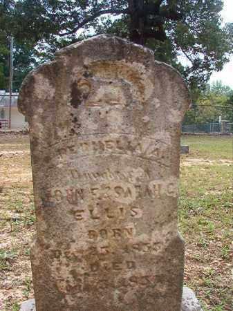 ELLIS, PERMELIA A - Calhoun County, Arkansas | PERMELIA A ELLIS - Arkansas Gravestone Photos