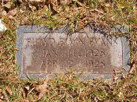 EVANS, FLOYD ELVIN - Calhoun County, Arkansas | FLOYD ELVIN EVANS - Arkansas Gravestone Photos