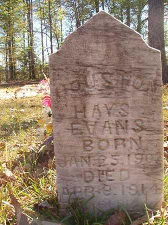 EVANS, HOUSTON HAYS - Calhoun County, Arkansas | HOUSTON HAYS EVANS - Arkansas Gravestone Photos