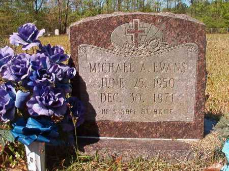 EVANS, MICHAEL A - Calhoun County, Arkansas | MICHAEL A EVANS - Arkansas Gravestone Photos