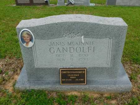 MCKINNIE GANDOLFI, JANIS - Calhoun County, Arkansas | JANIS MCKINNIE GANDOLFI - Arkansas Gravestone Photos