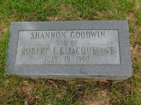 GOODWIN, SHANNON - Calhoun County, Arkansas   SHANNON GOODWIN - Arkansas Gravestone Photos