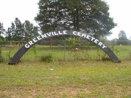 *GREENVILLE CEMETERY,  - Calhoun County, Arkansas |  *GREENVILLE CEMETERY - Arkansas Gravestone Photos