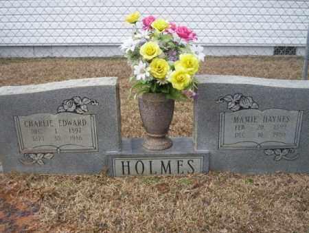 HAYNES HOLMES, MAMIE - Calhoun County, Arkansas | MAMIE HAYNES HOLMES - Arkansas Gravestone Photos